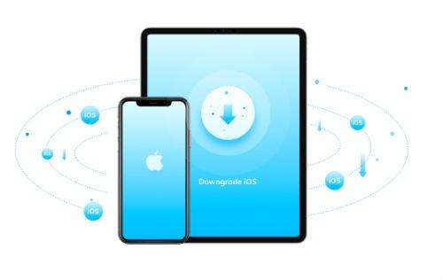 Downgrade iOS 13 beta to iOS 12